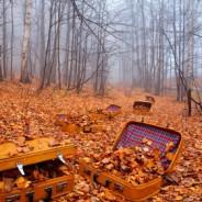 Sélection des meilleures valises pour vos vacances d'automne